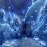Зимний лес загадочный (2).jpg