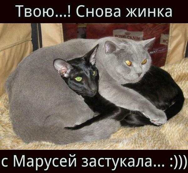 Застукали)))